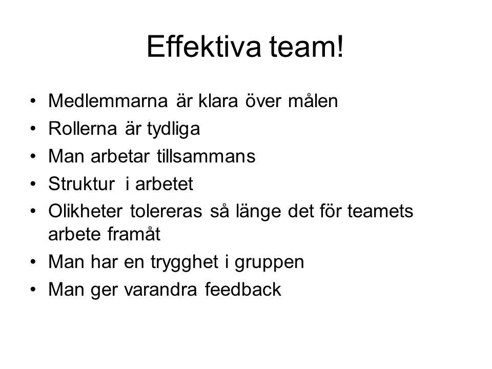 Effektiva team! Medlemmarna är klara över målen Rollerna är tydliga Man arbetar tillsammans Struktur i arbetet Olikheter tolereras så länge det för te