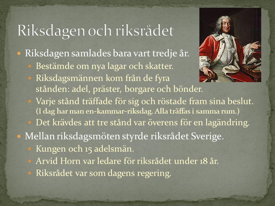 Riksdagen samlades bara vart tredje år. Bestämde om nya lagar och skatter. Riksdagsmännen kom från de fyra stånden: adel, präster, borgare och bönder.
