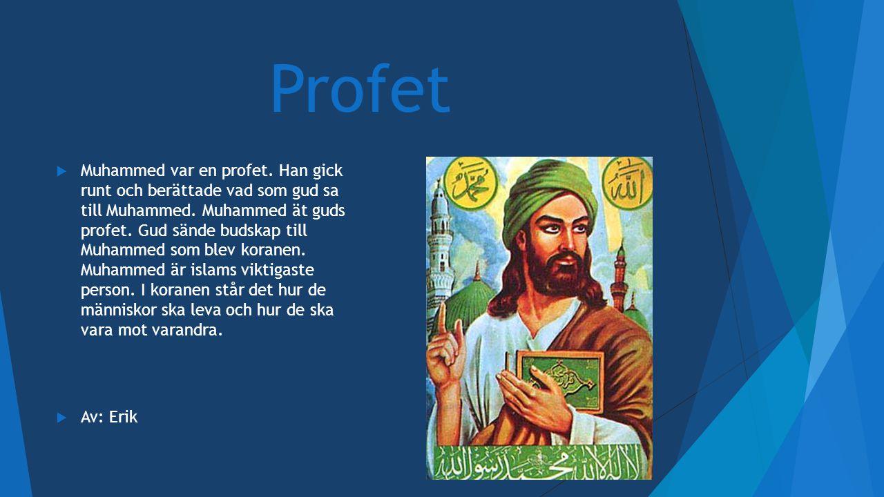 Profet  Muhammed var en profet. Han gick runt och berättade vad som gud sa till Muhammed. Muhammed ät guds profet. Gud sände budskap till Muhammed so