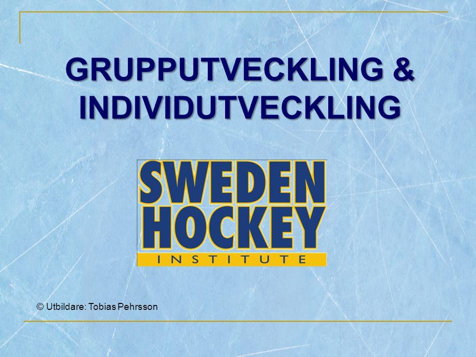 GRUPPUTVECKLING & INDIVIDUTVECKLING © Utbildare: Tobias Pehrsson