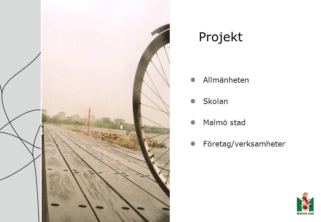 Projekt Allmänheten Skolan Malmö stad Företag/verksamheter