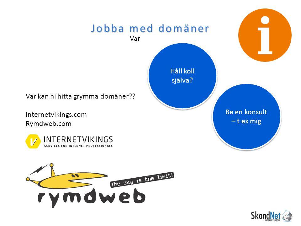 Jobba med domäner Var Var kan ni hitta grymma domäner?? Internetvikings.com Rymdweb.com Be en konsult – t ex mig Håll koll själva?