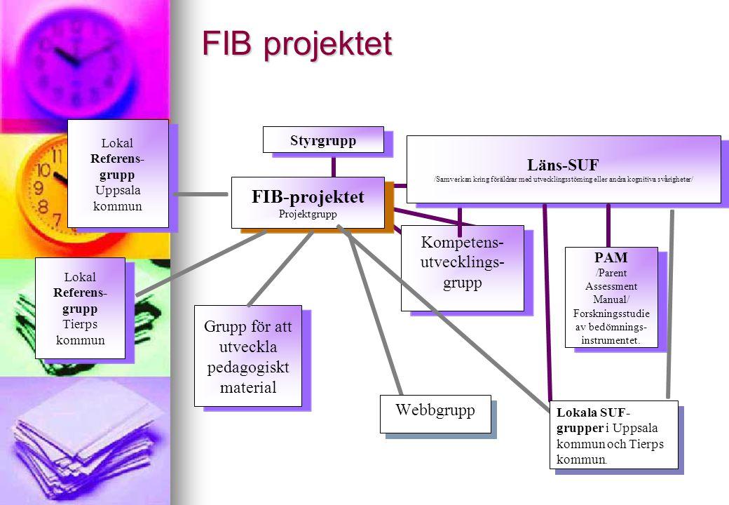 FIB projektet Webbgrupp Lokala SUF- grupper i Uppsala kommun och Tierps kommun.