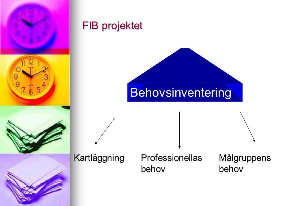 FIB projektet Behovsinventering KartläggningProfessionellas behov Målgruppens behov