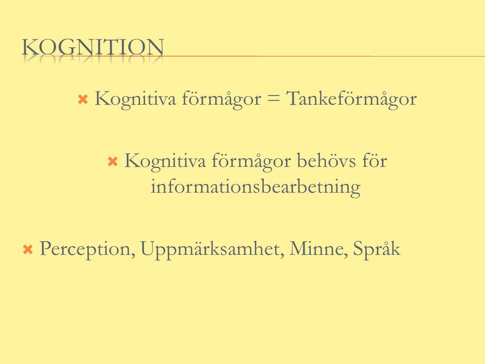  Kognitiva förmågor = Tankeförmågor  Kognitiva förmågor behövs för informationsbearbetning  Perception, Uppmärksamhet, Minne, Språk