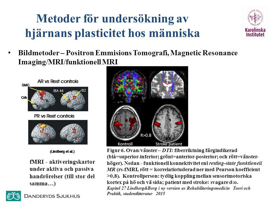 Metoder för undersökning av hjärnans plasticitet hos människa Bildmetoder – Positron Emmisions Tomografi, Magnetic Resonance Imaging/MRI/funktionell M