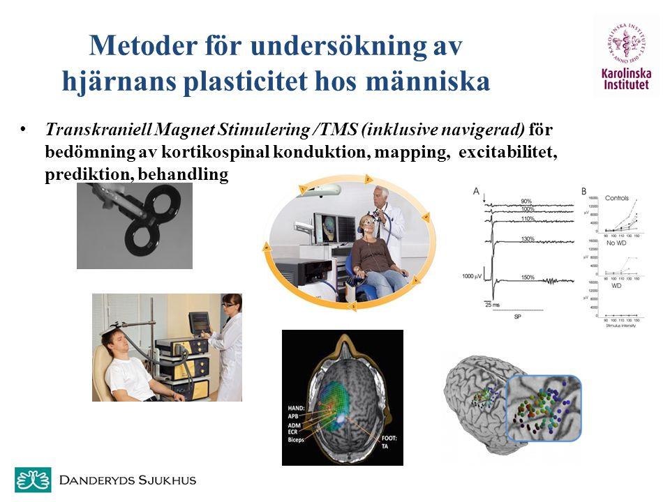 Metoder för undersökning av hjärnans plasticitet hos människa Transkraniell Magnet Stimulering /TMS (inklusive navigerad) för bedömning av kortikospin