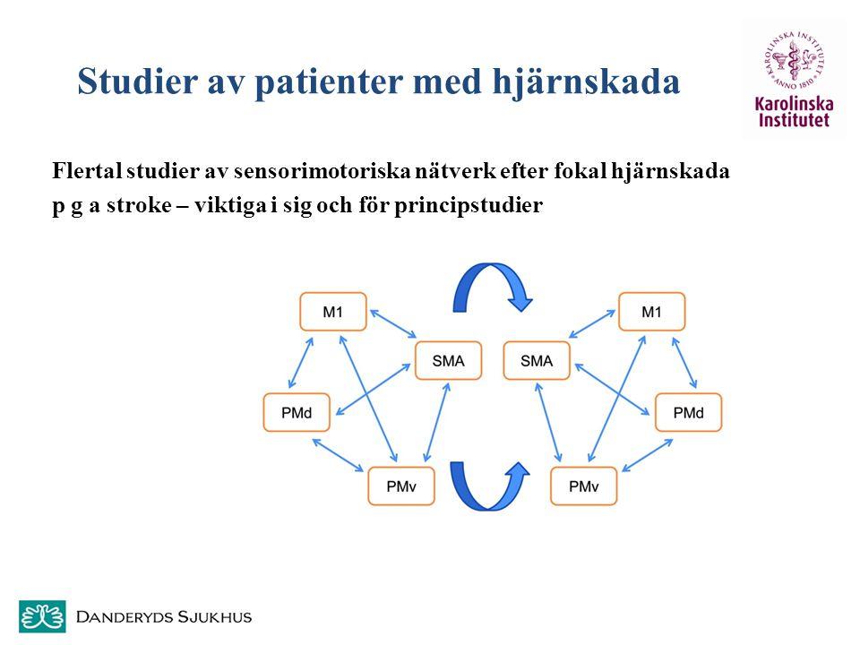 Studier av patienter med hjärnskada Flertal studier av sensorimotoriska nätverk efter fokal hjärnskada p g a stroke – viktiga i sig och för principstu