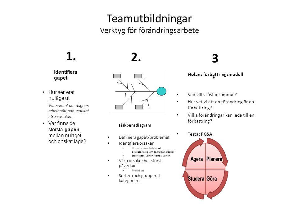 Teamutbildningar Verktyg för förändringsarbete Fiskbensdiagram Definiera gapet/problemet Identifiera orsaker – Huvudorsak och delorsak – Brainstorming om tänkbara orsaker – Ställ frågan varför, varför, varför Vilka orsaker har störst påverkan – Multirösta Sortera och gruppera i kategorier.