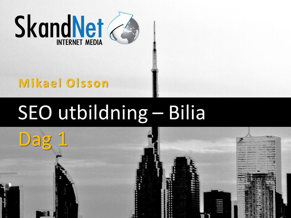 Mikael Olsson SEO utbildning – Bilia Dag 1