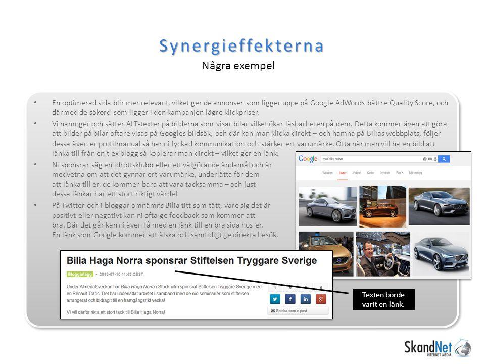 Synergieffekterna Några exempel Texten borde varit en länk.