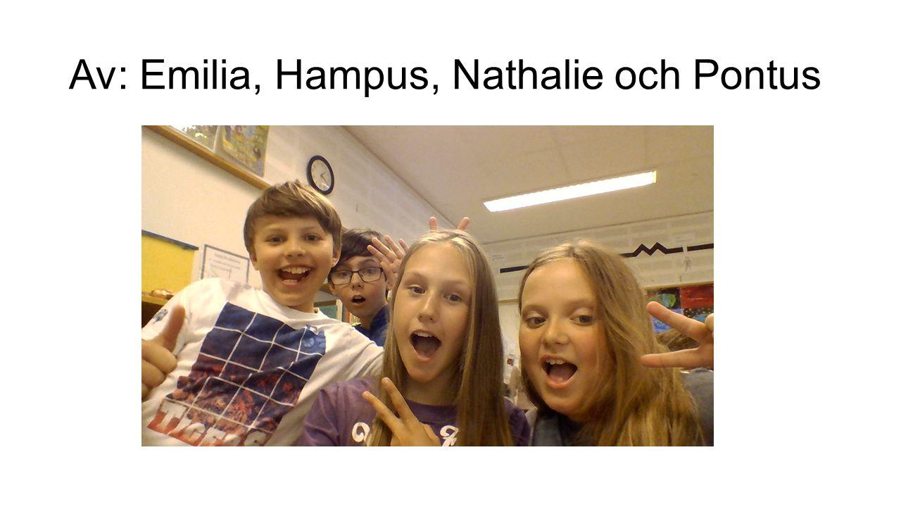 Av: Emilia, Hampus, Nathalie och Pontus