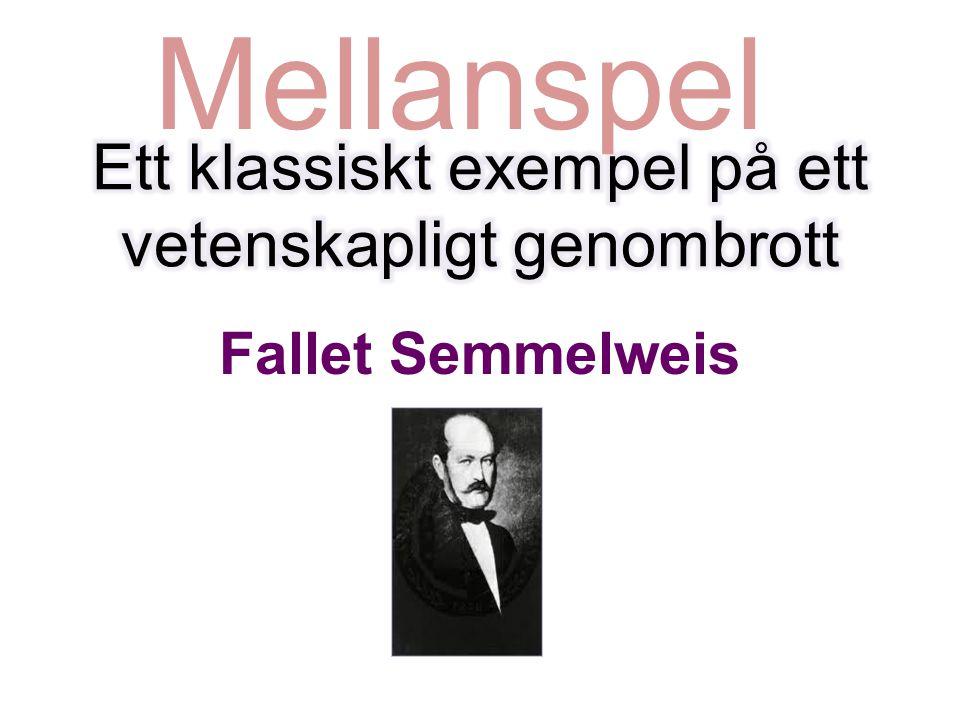Fallet Semmelweis Mellanspel