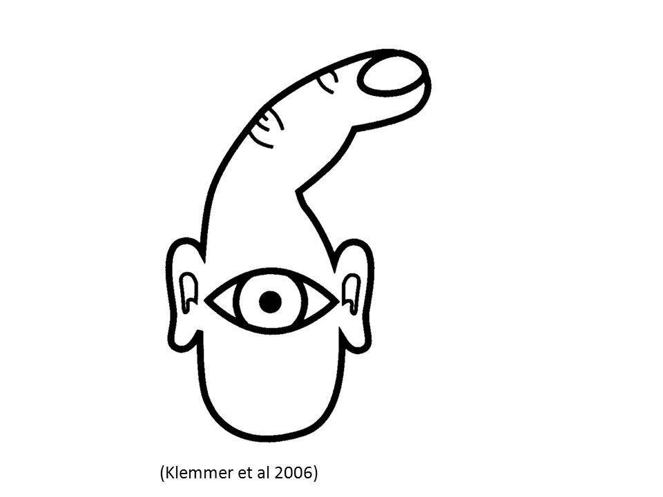 (Klemmer et al 2006)