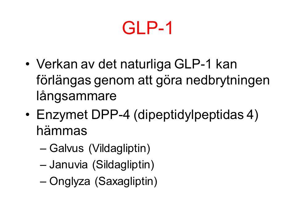 GLP-1 Verkan av det naturliga GLP-1 kan förlängas genom att göra nedbrytningen långsammare Enzymet DPP-4 (dipeptidylpeptidas 4) hämmas –Galvus (Vildag