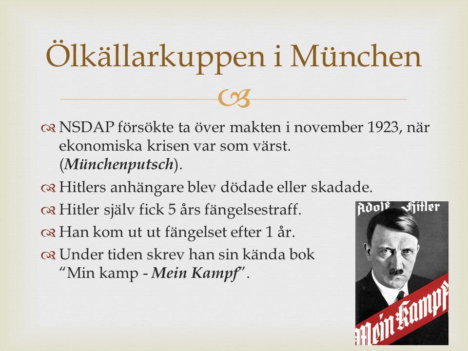   NSDAP försökte ta över makten i november 1923, när ekonomiska krisen var som värst.