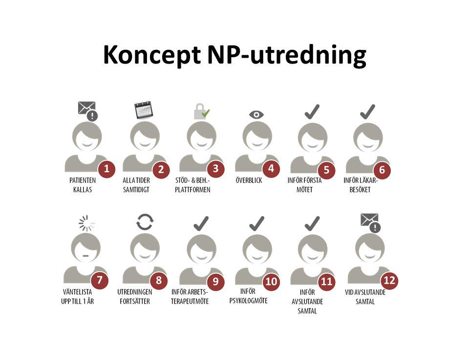 Koncept NP-utredning