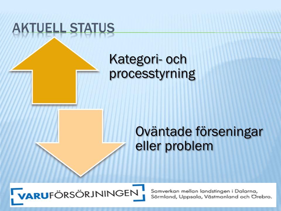 Kategori- och processtyrning Oväntade förseningar eller problem