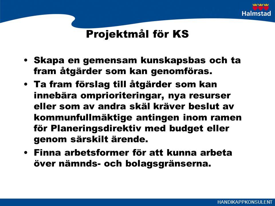 HANDIKAPPKONSULENT Projektmål för KS Skapa en gemensam kunskapsbas och ta fram åtgärder som kan genomföras.