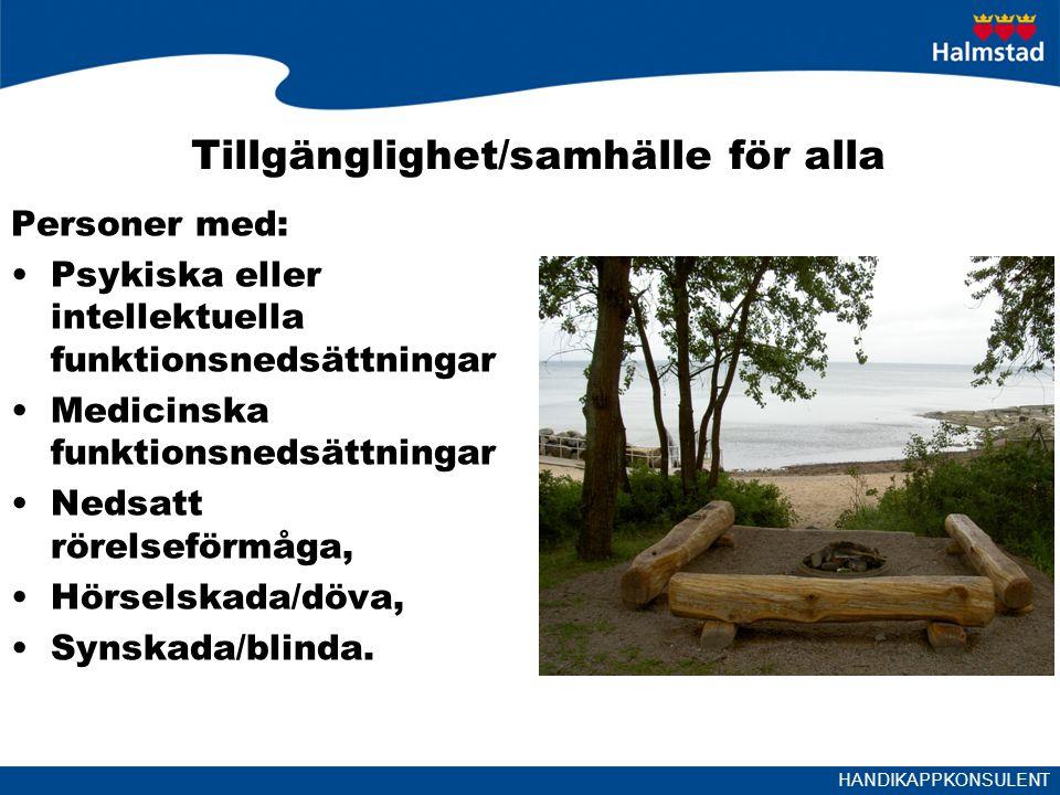 HANDIKAPPKONSULENT Fokus Tidigare temaår för KS, arbetsmarknad 2013 och kulturen 2014.