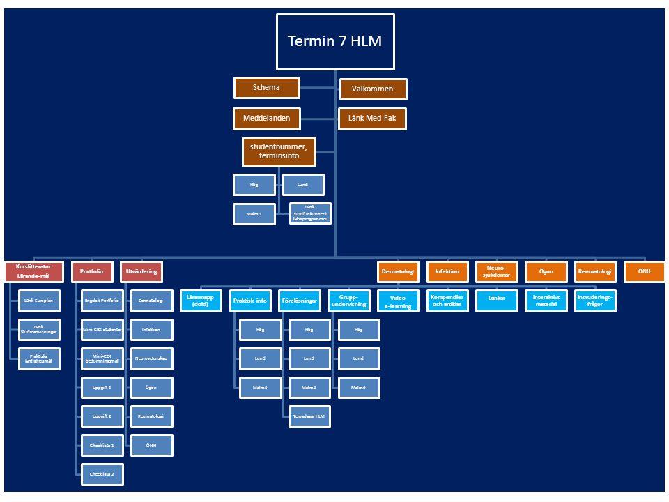 Schema Tabellen på Moodle: Länkar till scheman på Med Faks hemsida – (översiktsschema och/eller helkursschema) Länkar till Moodle mappar detaljscheman för respektive ämne