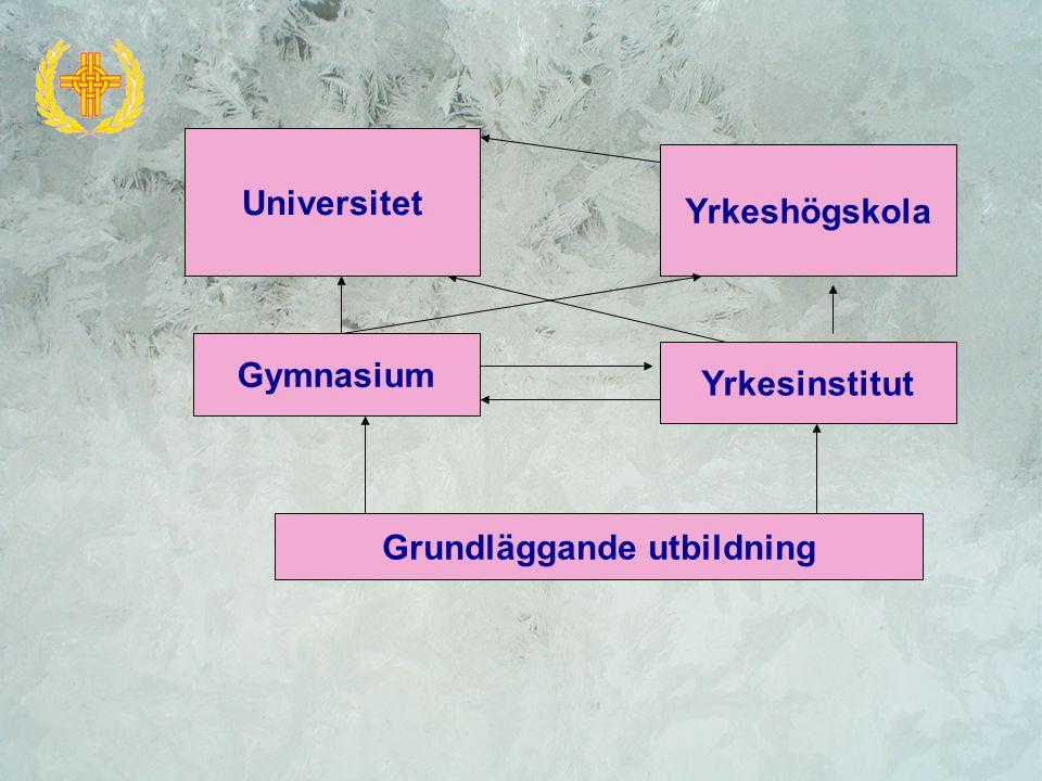 Yrkesinstitut Gymnasium Grundläggande utbildning Yrkeshögskola Universitet