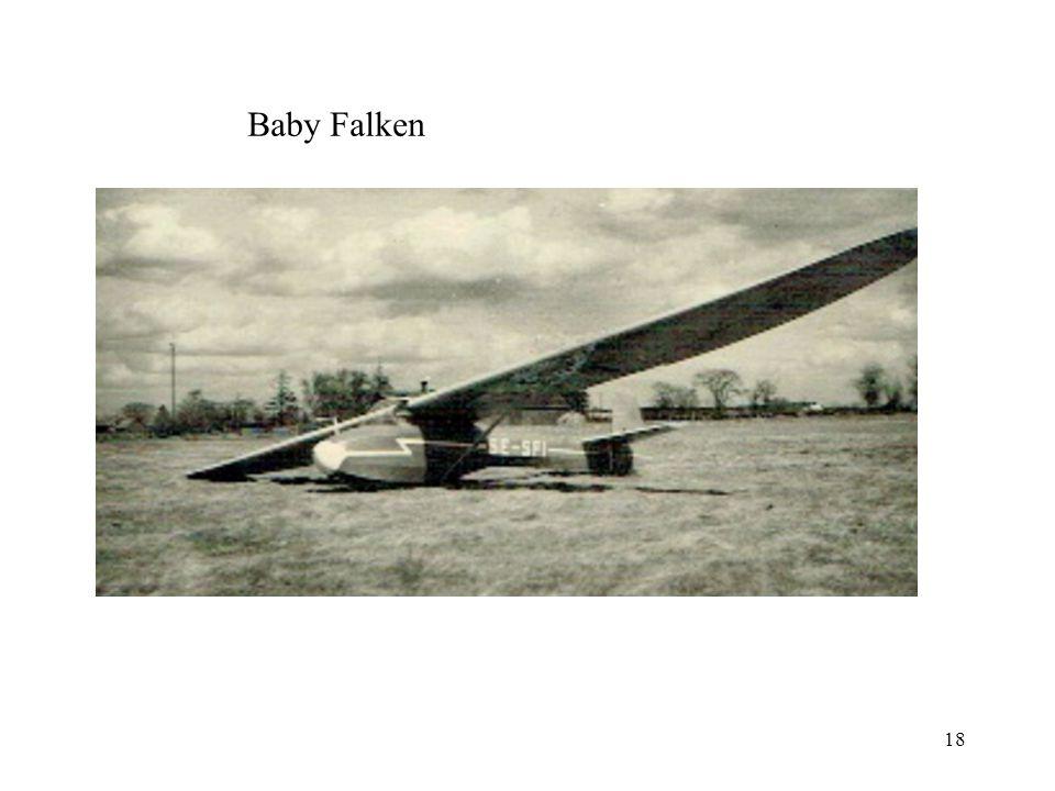 18 Baby Falken