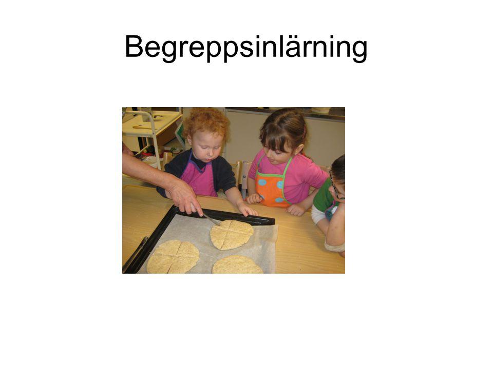 Begreppsinlärning