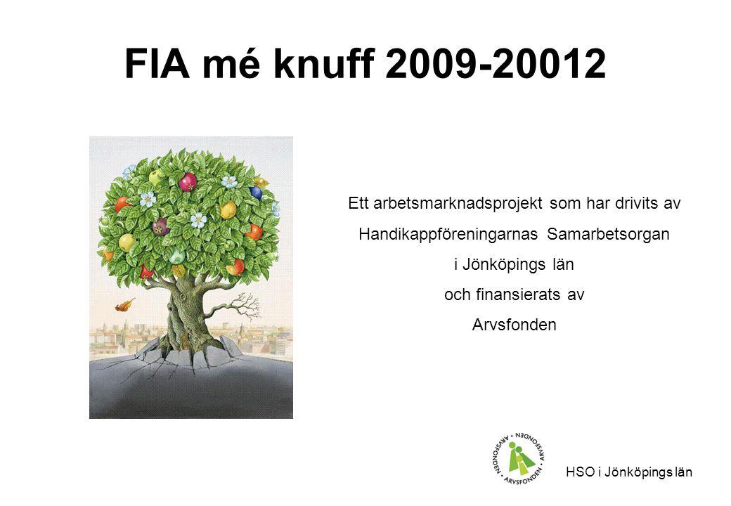 HSO i Jönköpings län FIA mé knuff 2009-20012 Ett arbetsmarknadsprojekt som har drivits av Handikappföreningarnas Samarbetsorgan i Jönköpings län och finansierats av Arvsfonden