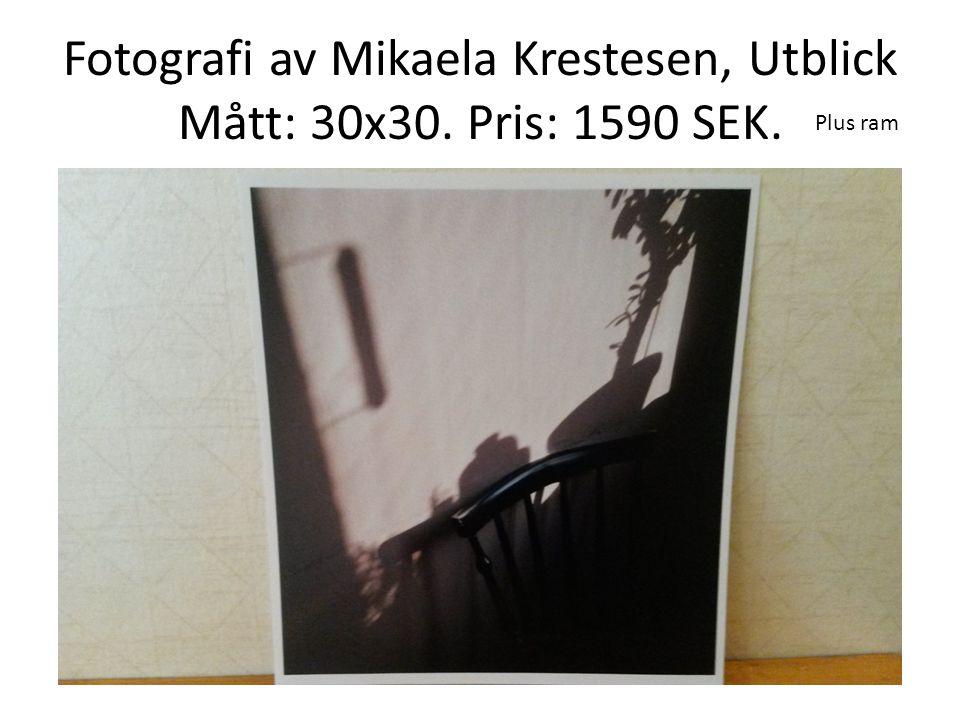 Fotografi av Mikaela Krestesen, Utblick Mått: 30x30. Pris: 1590 SEK. Plus ram