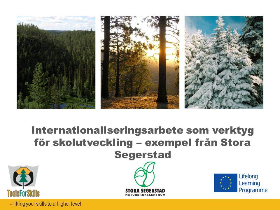 Internationaliseringsarbete som verktyg för skolutveckling – exempel från Stora Segerstad – lifting your skills to a higher level