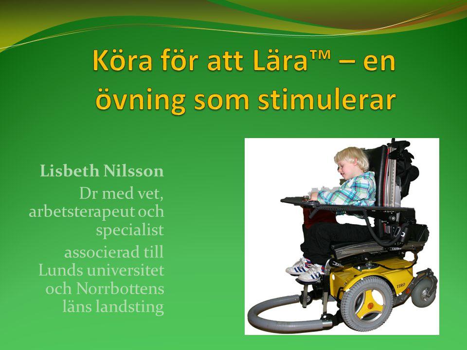 Lisbeth Nilsson Dr med vet, arbetsterapeut och specialist associerad till Lunds universitet och Norrbottens läns landsting