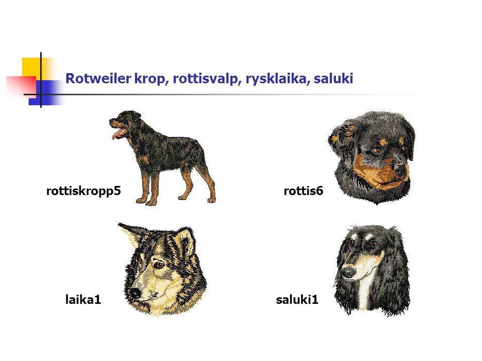 Rotweiler krop, rottisvalp, rysklaika, saluki rottiskropp5rottis6 laika1saluki1