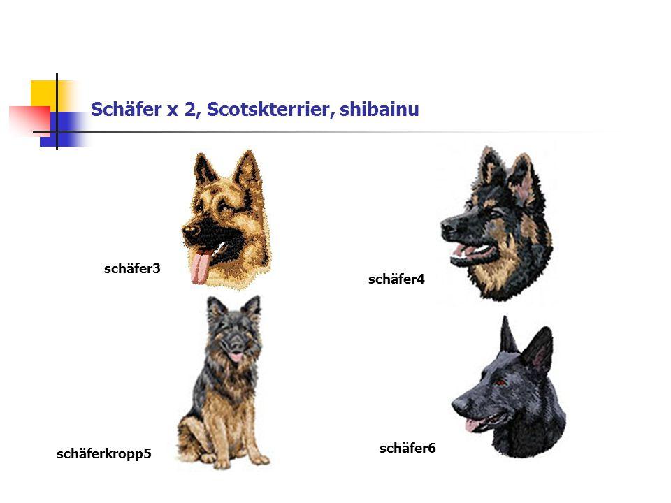 Schäfer x 2, Scotskterrier, shibainu schäfer3 schäfer4 schäferkropp5 schäfer6