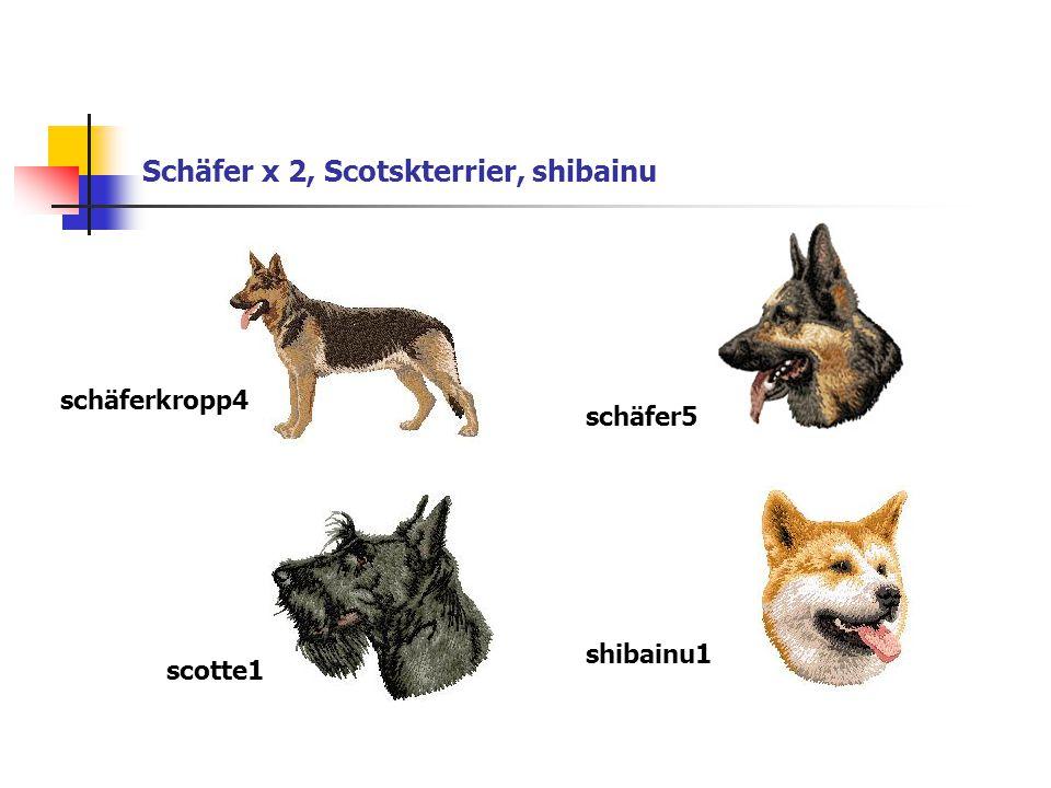 Schäfer x 2, Scotskterrier, shibainu schäferkropp4 schäfer5 scotte1 shibainu1