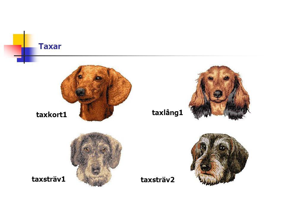 Taxar taxkort1 taxlång1 taxsträv1 taxsträv2
