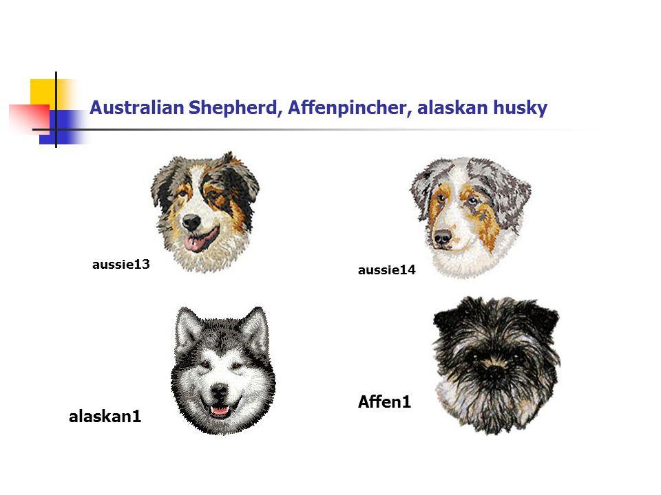 Kerry blue terrier, Kooikerhondje, Landseer, Lagottoromagnolo kerryblue1kooki1 landser1 lagotto1
