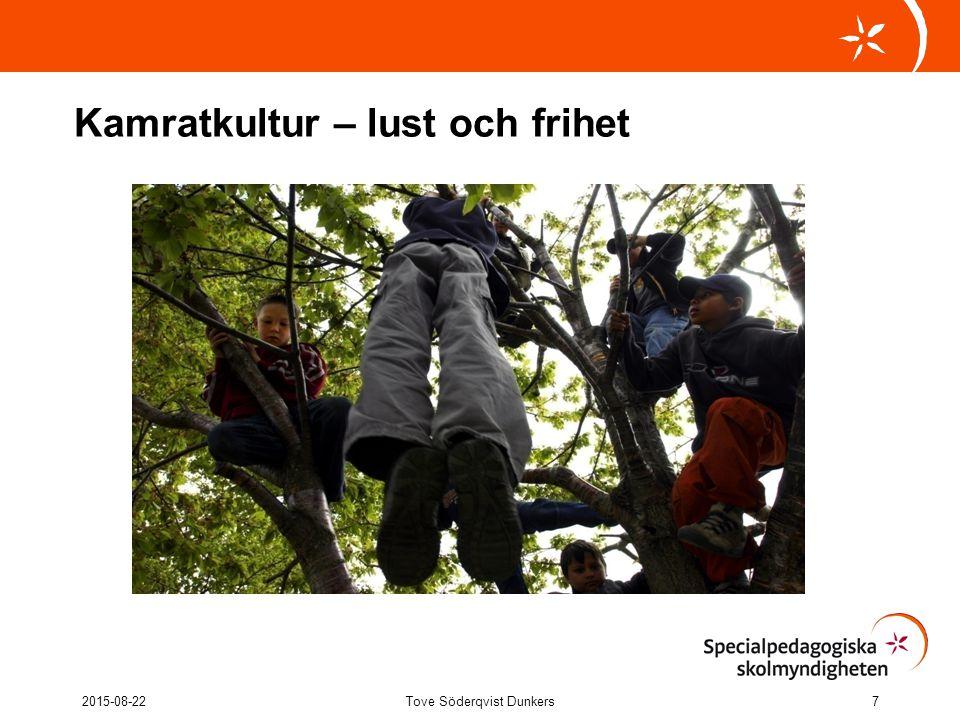 Kamratkultur – lust och frihet 2015-08-22Tove Söderqvist Dunkers7