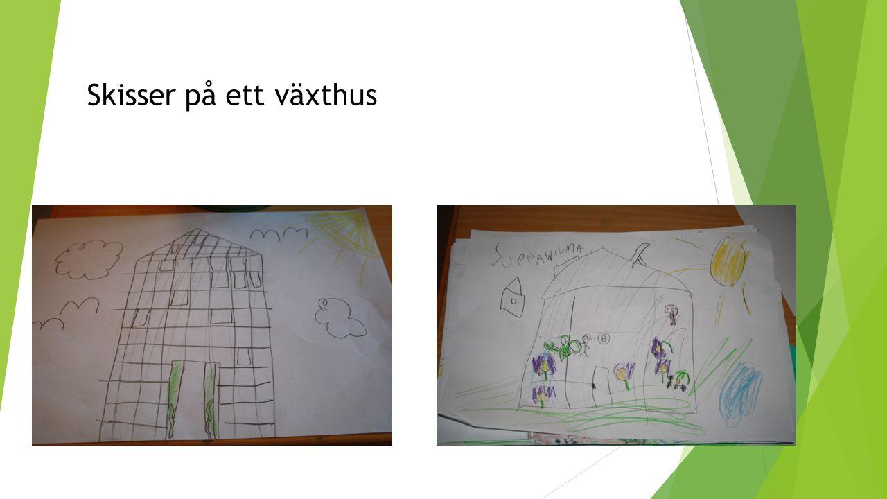 Skisser på ett växthus