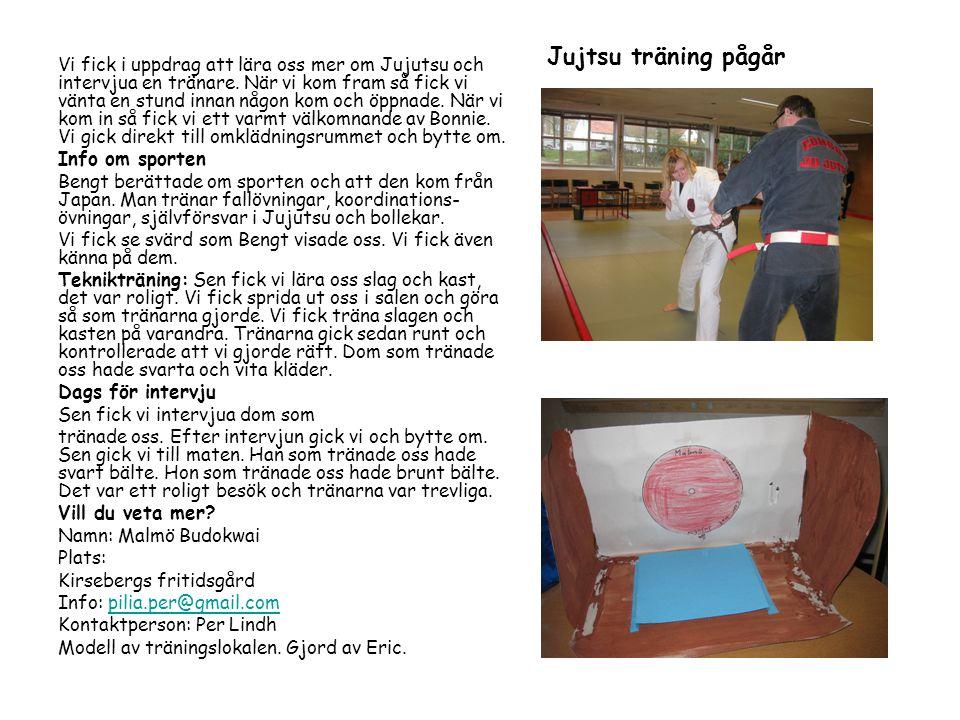 Vi fick i uppdrag att lära oss mer om Jujutsu och intervjua en tränare.