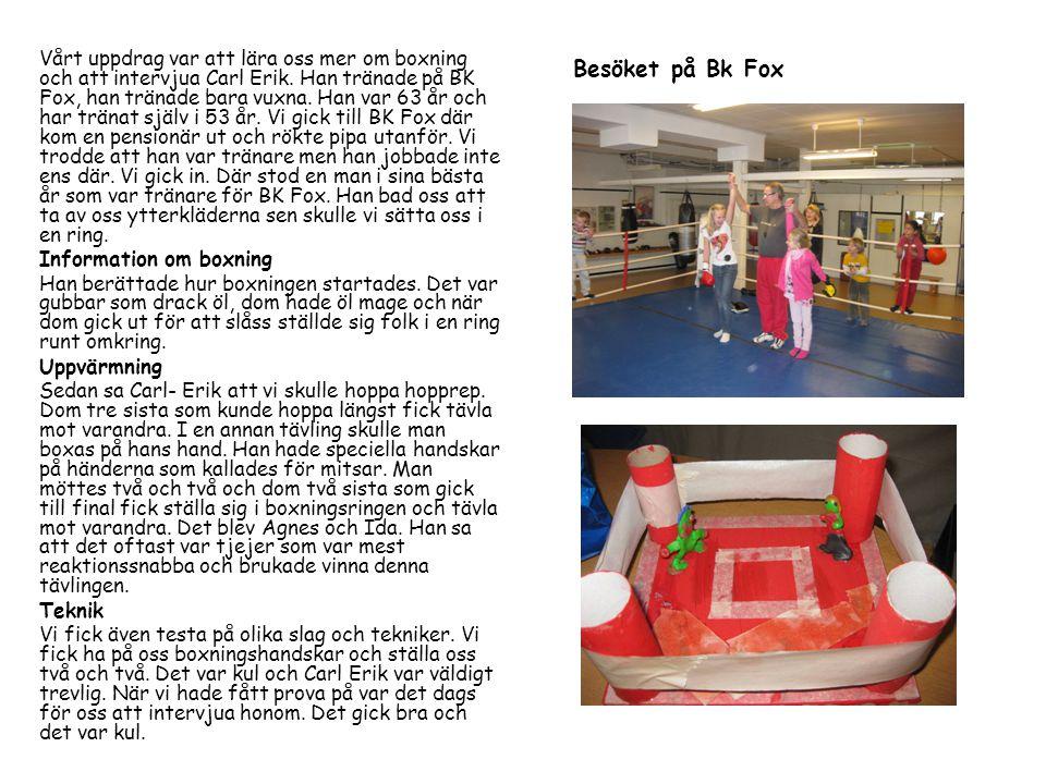 Vårt uppdrag var att lära oss mer om boxning och att intervjua Carl Erik.
