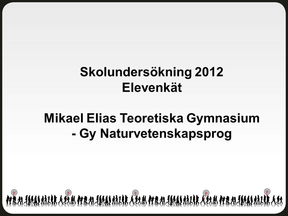 Trivsel och trygghet Mikael Elias Teoretiska Gymnasium - Gy Naturvetenskapsprog Antal svar: 22