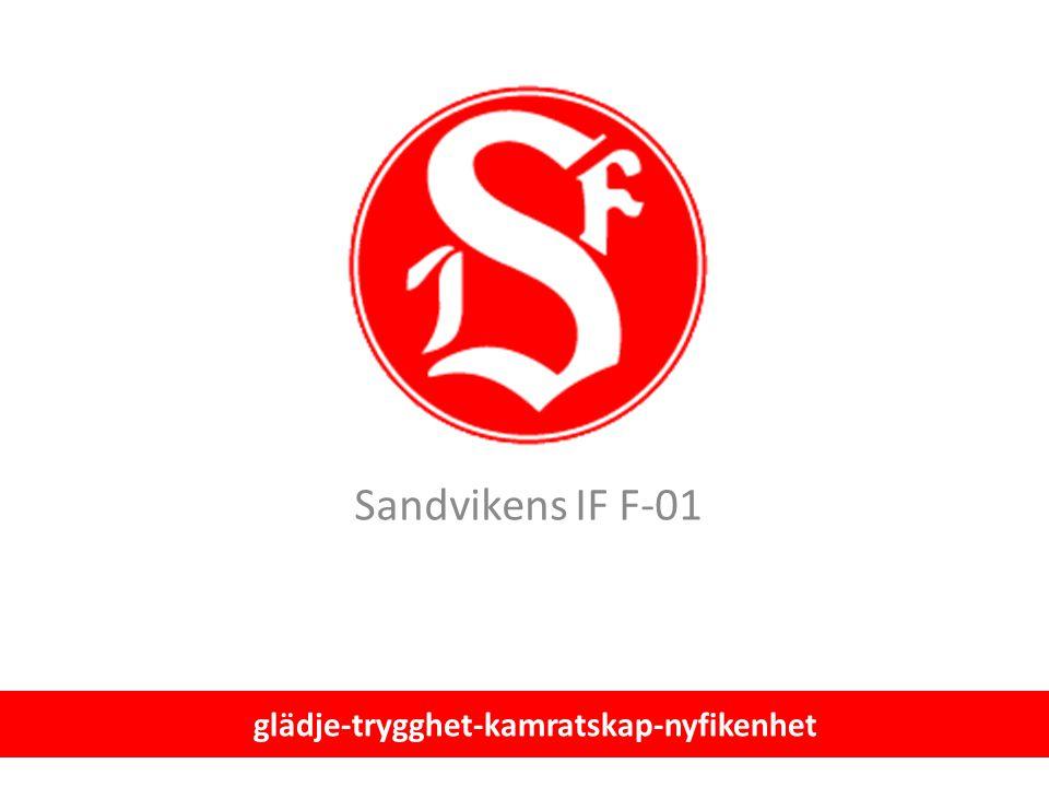 Sandvikens IF F-01 glädje-trygghet-kamratskap-nyfikenhet