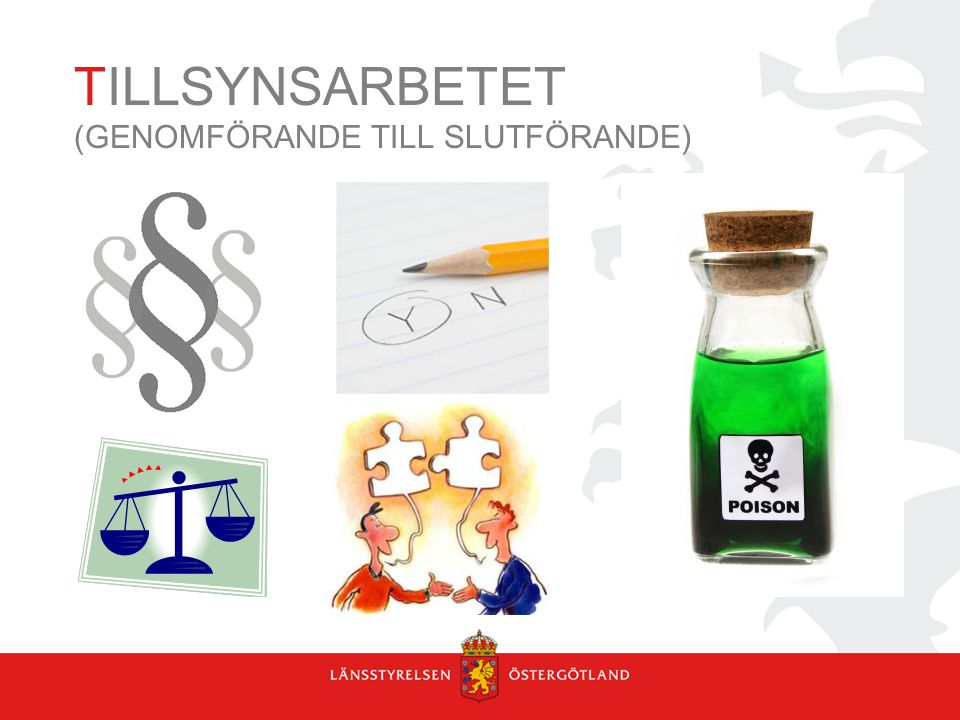 TILLSYNSARBETET (GENOMFÖRANDE TILL SLUTFÖRANDE)