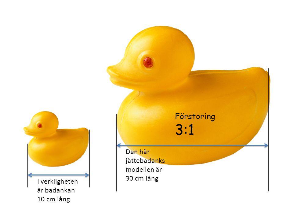 I verkligheten är badankan 10 cm lång Den här jättebadanks modellen är 30 cm lång Förstoring 3:1