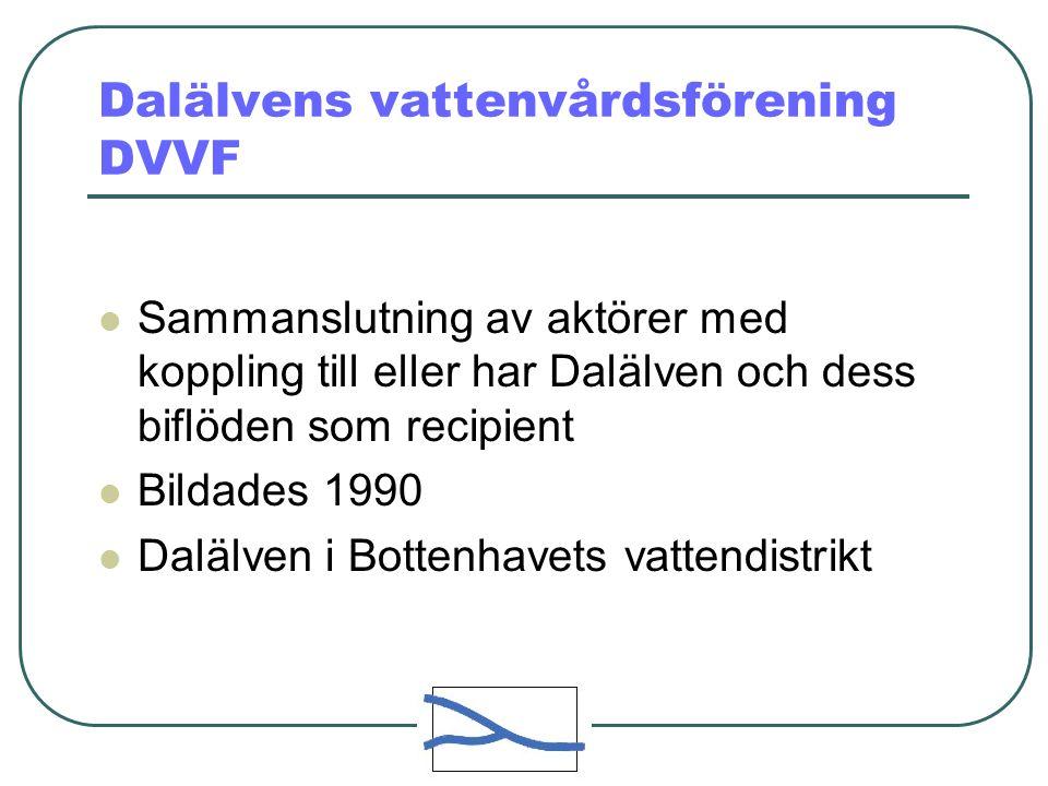 Dalälvens vattenvårdsförening DVVF Sammanslutning av aktörer med koppling till eller har Dalälven och dess biflöden som recipient Bildades 1990 Dalälven i Bottenhavets vattendistrikt