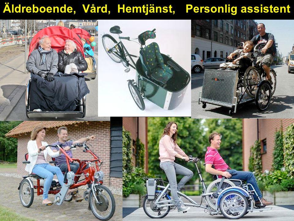 Äldreboende, Vård, Hemtjänst, Personlig assistent