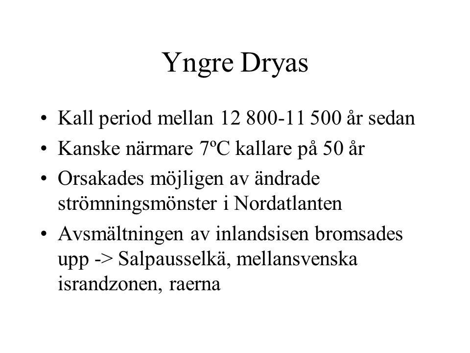 Yngre Dryas Kall period mellan 12 800-11 500 år sedan Kanske närmare 7ºC kallare på 50 år Orsakades möjligen av ändrade strömningsmönster i Nordatlant