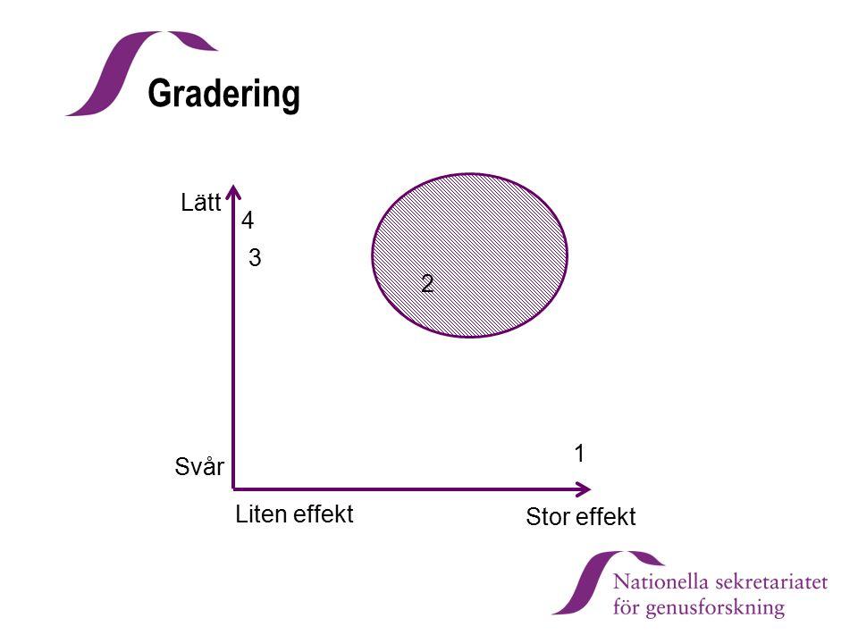Lätt Stor effekt 1 2 3 4 Svår Liten effekt Gradering