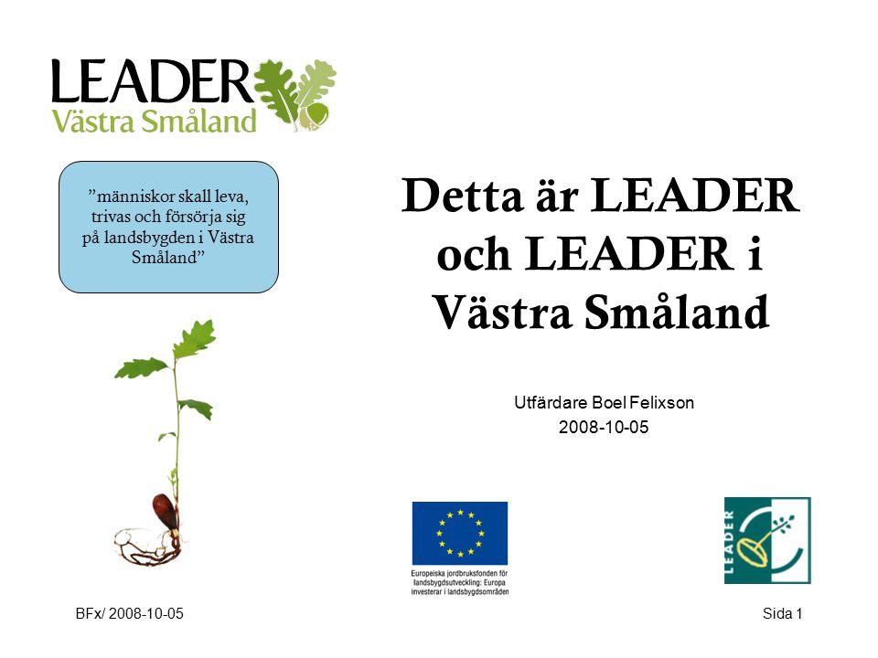BFx/ 2008-10-05Sida 1 Detta är LEADER och LEADER i Västra Småland Utfärdare Boel Felixson 2008-10-05 människor skall leva, trivas och försörja sig på landsbygden i Västra Småland